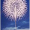 8月3日(水)〜4日(木) 長岡まつり花火大会